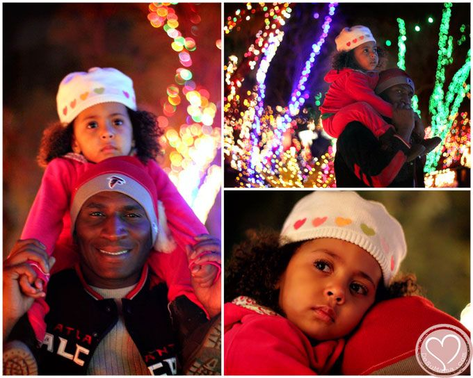 Ethel M Chocolate Factory Holiday Lights