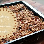 Homemade Granola Recipe Ideas