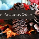 Simple Nature Decor for Autumn that Makes Me Happy